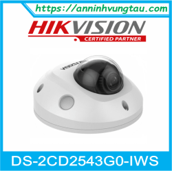 Camera Quan Sát IP DS-2CD2543G0-IWS