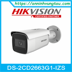 Camera Quan Sát IP DS-2CD2663G1-IZS